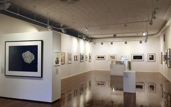 hatch-contemporary-arts-space-exhibit